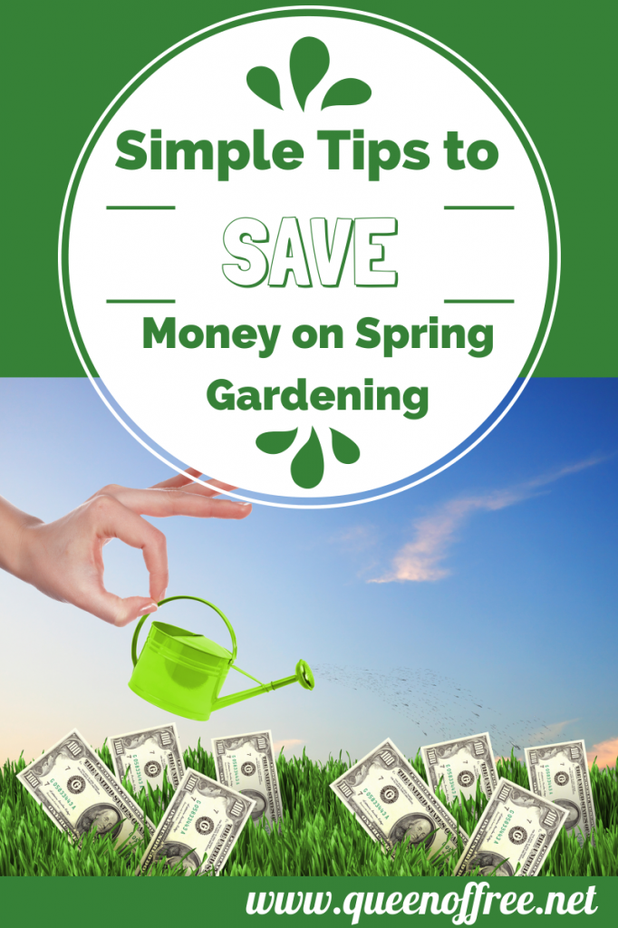 Simple tips to save money on spring gardening queen of free - Practical tips to make money from gardening ...