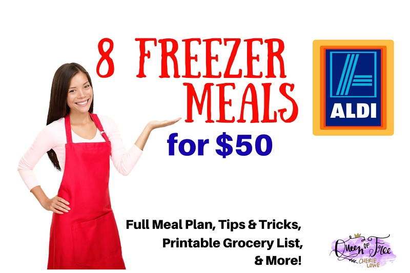 8 ALDI Freezer Meals for $50