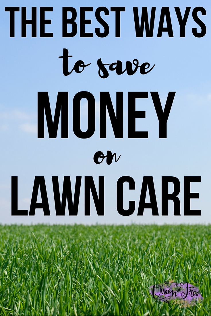 How To Save Money On Lawn Care Queen Of Free
