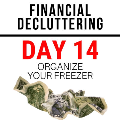 Put on your parka, let's save some money (and our sanity) by cleaning out the freezer. How you can quickly get the job done!